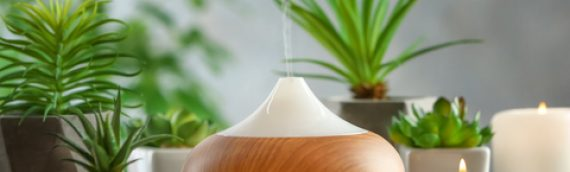 Overview Of The Popularity Of Oil Diffusers In The UK